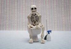 Skeleton Royalty Free Stock Image