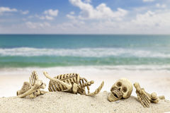 Skeleton with skull   on sand ,blue sky with sea background Royalty Free Stock Image
