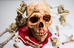 SKELETON AND SKULLS HALLOWEEN FESTIVAL. Stock Photography