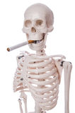 Skeleton smoking cigarette Royalty Free Stock Image