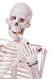 Skeleton smoking cigarette isolated Stock Image