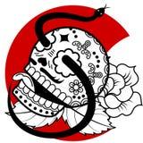 Skeleton Snake Stock Images
