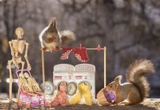 Skeleton and squirrels with a washing machine. Skeleton and red squirrels with an washing machine Royalty Free Stock Photography