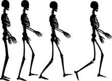 Skeleton step Royalty Free Stock Photos