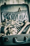 Skeleton in a Suitcase 1 Royalty Free Stock Photos