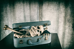 Skeleton in a Suitcase 5 Stock Photo