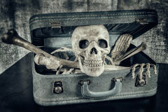 Skeleton in a Suitcase 4 Stock Image