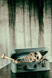 Skeleton in a Suitcase 6 Royalty Free Stock Photo