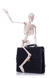 Skeleton with suitcase isolated on white Royalty Free Stock Images