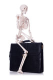 Skeleton with suitcase isolated on white Royalty Free Stock Image