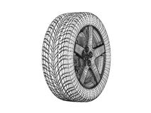Skeleton tires Royalty Free Stock Image