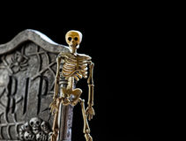 Skeleton and tombstone. A plastic Halloween skeleton stands next to a carved tombstone against black background stock image
