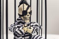 Skeleton toy stock images