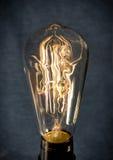 Skeleton Trapped Lightbulb Royalty Free Stock Image