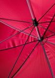Skeleton of an umbrella Royalty Free Stock Photo