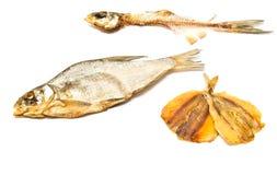 Skeleton und geräucherte Fischnahaufnahme lizenzfreie stockfotografie