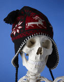Skeleton with winter hat. Humorous closeup of a skeleton wearing a knitted winter hat.  Isolated against a blue background Stock Photo