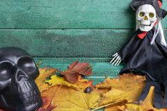 Skeleton witch and black skull over autumn leaves on wooden background. Halloween concept.  royalty free stock photos