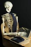 Skeleton at Work 3. A skeleton works on a laptop computer Royalty Free Stock Image
