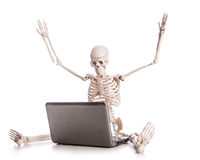 Skeleton working. On laptop on white Stock Photos