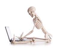Skeleton working. On the laptop Royalty Free Stock Image