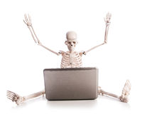 Skeleton working on laptop Royalty Free Stock Photo