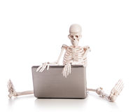 Skeleton working Stock Photography