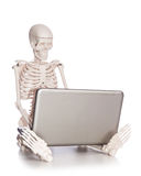 Skeleton working on  laptop Stock Images