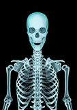 Skeleton x-ray Stock Photo