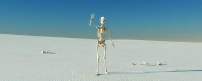 skeletones Stock Images