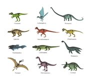 Skeletons ancient prehistoric predatory dinosaurs. Silhouettes bone wild animal dinosaurs. Set of animals living in airspace, on ground, in water. Skeletons vector illustration