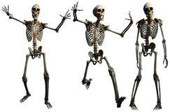 Skeletons 3D illustration Royalty Free Stock Photo