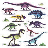 Skeletons of dinosaurs silhouettes set fossil bone tyrannosaurus prehistoric animal and jurassic monster predator dino Royalty Free Stock Images