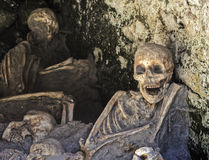 Skeletons at Herculaneum Stock Images