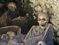Skeletons at Herculaneum Stock Images