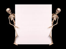 Skeletons holding empty blank over black. Halloween. Skeletons holding empty blank over black background. Halloween Royalty Free Stock Photography