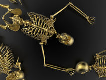 Skeletons laying on the ground Stock Photos