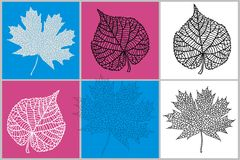 Skeletons of leaves. Vector skeletons of leaves abstract collage applique design stock illustration