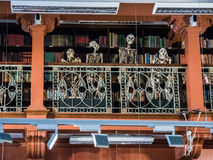 Skeletons look down on visitors from the library balcony at the. London, England, August 22, 2015: Skeletons gaze down on visitors from a library balcony at the Royalty Free Stock Image