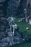 Skeletons In Old Abbey Royalty Free Stock Photo