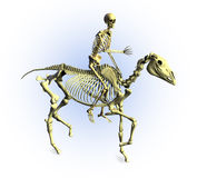 Skeletons Riding - with clipping path. 3D render of a human skeleton riding a skeleton horse Stock Images