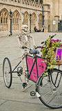 Skeletor in the bicycle. Skeletor in a stand bycicle with a basket of flowers and an advertise in the center of Bath Spa, England Royalty Free Stock Image