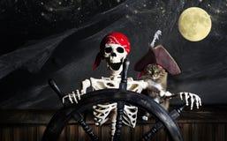 Skeletpiraat en Kat Stock Afbeeldingen