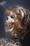 Skelett- överraskning Royaltyfria Foton
