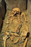Skelett Arkivbild