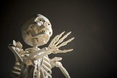 Skelett auf schwarzem Hintergrund Stockfotografie