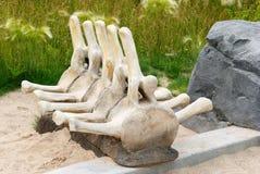 Skelett av det förhistoriska djuret royaltyfri bild