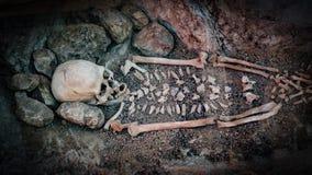 Skelett av en primitiv man inom en grotta Royaltyfri Bild
