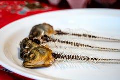 Skelett av fisken på en platta Royaltyfri Fotografi