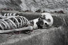 Skelett, das in Halloween liegt Lizenzfreie Stockfotos